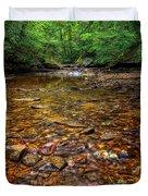Brandywine Creek  Duvet Cover