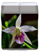 Brassocattleya Orchid Duvet Cover