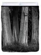 Breadth Of Trees Duvet Cover
