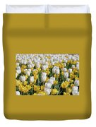 Breathtaking Field Of Blooming Yellow And White Tulips Duvet Cover