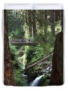 Bridge At Sol Duc Fall #1 Duvet Cover