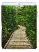 Bridge To Chimney Pond Duvet Cover