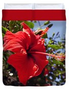 Brightly Colored Hibiscus On The Greek Island Of Mykonos  Duvet Cover