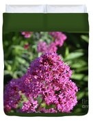 Brilliant Pink Blooming Phlox Flowers In A Garden Duvet Cover