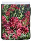 Brilliant Red Blooming Phlox Flowers In A Garden Duvet Cover