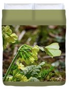 Brimstone On Cowslip Primrose Duvet Cover