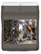 Bristlecone Forest, Ca November 2105 Duvet Cover