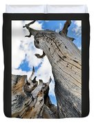 Bristlecone Great Basin Portrait Duvet Cover