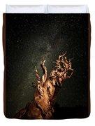Bristlecone Nights Duvet Cover