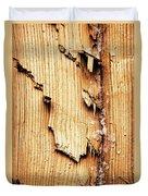 Broken Old Stump Spruce Duvet Cover