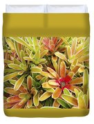 Bromeliad Brightness Duvet Cover by Ron Dahlquist - Printscapes