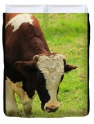 Brown And White Bull On A Farm Duvet Cover