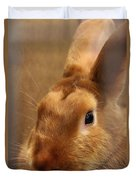 Brown Bunny And Whisker's Closeup Duvet Cover