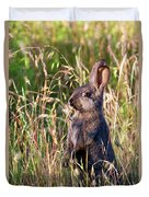 Brown Bunny Duvet Cover