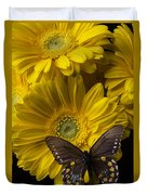 Brown Butterfly On Yellow Daisies  Duvet Cover