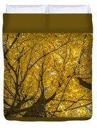 Brown County Colors Duvet Cover
