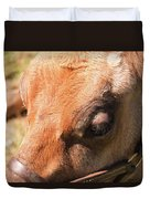 Brown Cow 2 Duvet Cover