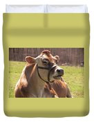 Brown Cow Chewing Duvet Cover