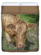 Brown Cow Duvet Cover