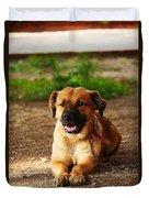 Brown Dog Lying Duvet Cover