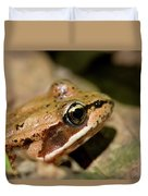 Brown Frog In The Forest - Western Oregon Duvet Cover