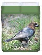 Brown-headed Cowbird 2 Duvet Cover