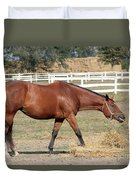 Brown Horse Eating Hay Ranch Scene Duvet Cover