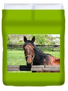 Brown Horse In A Corral Duvet Cover