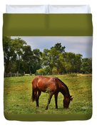 Brown Horse In Holland Duvet Cover