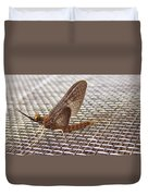 Brown Mayfly On Screening    Spring      Indiana Duvet Cover