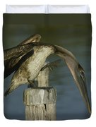 Brown Pelican At The Dock Of The Bay Duvet Cover