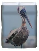 Brown Pelican On The Dais Duvet Cover