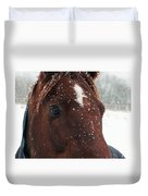 Brown Snow Horse Duvet Cover