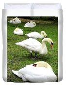 Bruges Swans 2 Duvet Cover