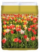 Brushed Tulips Duvet Cover