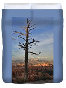 Bryce Canyon Dead Tree Sunset 3 Duvet Cover