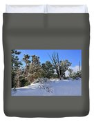 Bryce Canyon Snowfall Duvet Cover