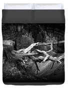 Bryce Canyon Tree Stump On A Ridge Duvet Cover