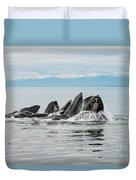 Bubble-net Group With Mountains In Alaska Duvet Cover