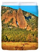 Buck And Flatirons Duvet Cover