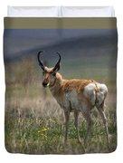 Buck Antelope  Duvet Cover