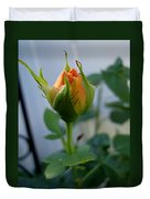 Bud Of A Rose Duvet Cover