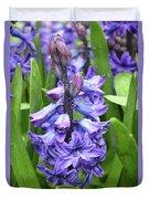 Budding And Flowering Purple Hyacinth Flower Duvet Cover