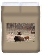 Buffalo And Calf Duvet Cover
