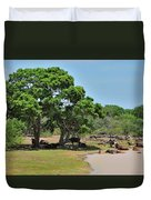 Buffalo At Hambantota Duvet Cover