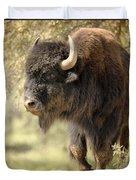 Buffalo Bull Duvet Cover