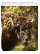 Buffalo Cow Duvet Cover