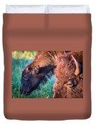 Buffalo Family Duvet Cover