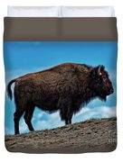 Buffalo In Profile Duvet Cover