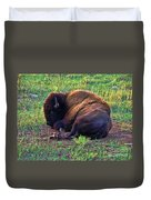 Buffalo In The Badlands Duvet Cover